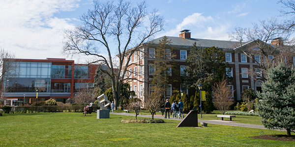 adelphi university online; colleges with sports management programs