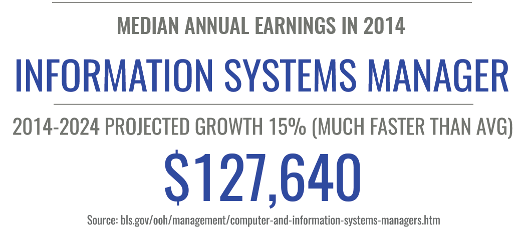 online masters in information systems stats
