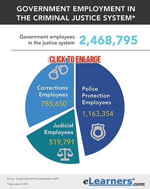 Government Employment in the Criminal Justice System